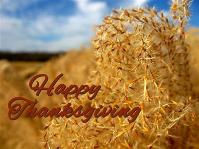 Have a Happy and Safe Thanksgiving!